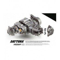 MOTOR DAYTONA ANIMA 190F 4V 25CV
