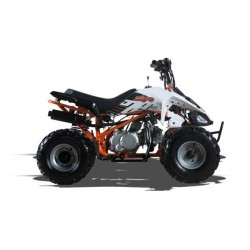 Quad ATV 110 c.c. , Frenos de disco delanteros,sin marcha atrás