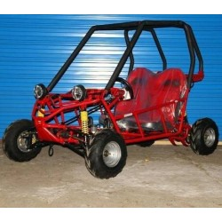Buggy junior 110cc biplaza