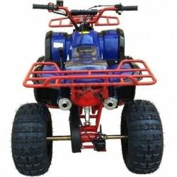 Quad Panda Hummer 125 c.c. 3 velocidades,marcha atrás, arranque eléctrico, mando a distancia.